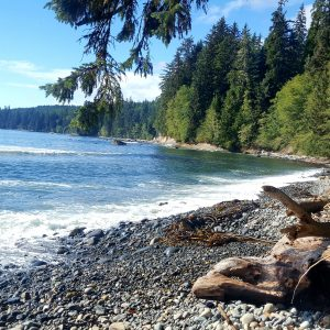 The quiet beach on Vancouver Island in Canada.